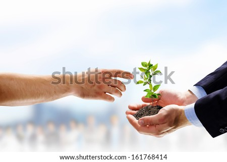 Close up image of human hands holding sprout #161768414