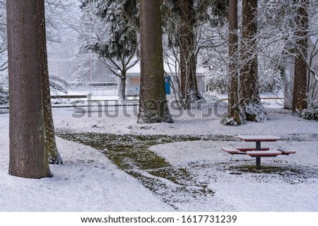 A light snowfall covers a picnic table and paths among large trees in a small public park. In the background there is a building for restrooms.  Ballfield fences are behind that. #1617731239