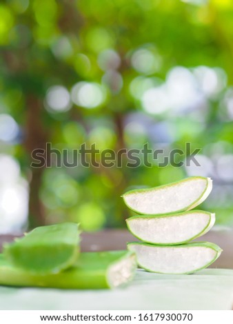 Close up sliced raw green Aloe vera plant put on banana leaf table natural sunlight background, side view use for herb treatment moisturize skin care. #1617930070