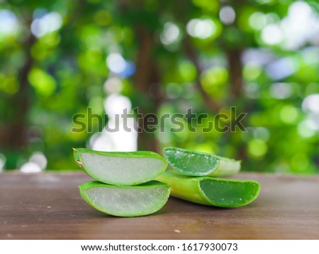 Close up sliced raw green Aloe vera plant put on banana leaf table natural sunlight background, side view use for herb treatment moisturize skin care. #1617930073
