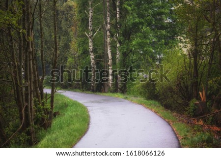 country road in the country side of Germany  #1618066126