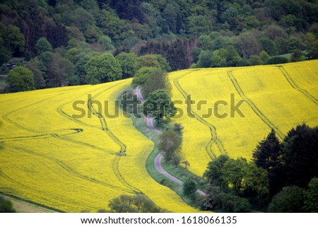 country road in the country side of Germany  #1618066135