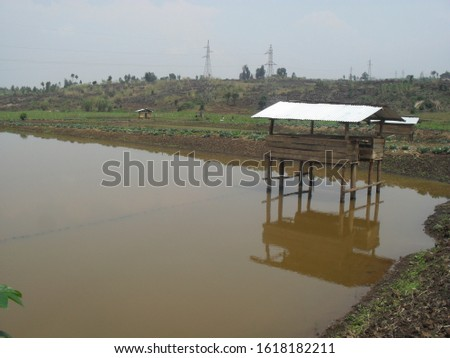 Fish farming mixed with rabbit farming #1618182211