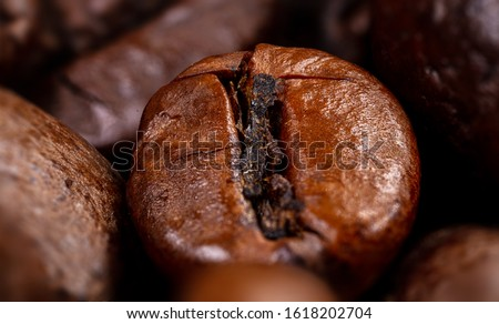 Close up of a coffee bean. Macro photography of coffee beans in high resolution. Very detailed sharp ultra macro on a roasted coffee bean.  Microscopic photography. Perfect desktop background picture