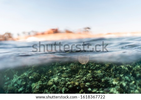 Half under half over water photography in the beautiful ocean of egypt #1618367722
