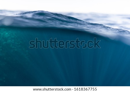 Half under half over water photography in the beautiful ocean of egypt #1618367755