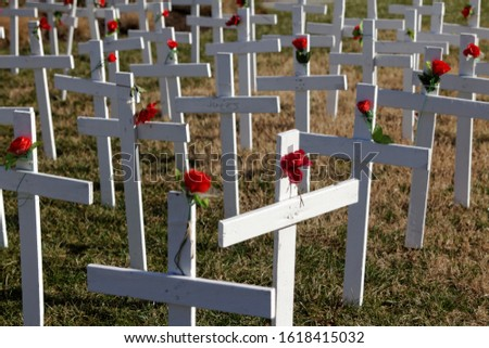 A single cross faces in a different direction than the rows of identical plain white crosses adorned with single red roses. #1618415032