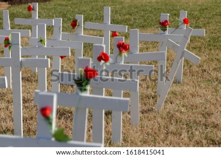 A single cross leans out from rows of identical plain white crosses adorned with single red roses. #1618415041