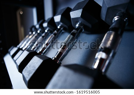 Set of dumbbells in gym.High quality professional dumbell weights with chrome handle.Train muscle strength with crossfit equipment in sport club.Sports equip in fitness studio for athletes #1619516005
