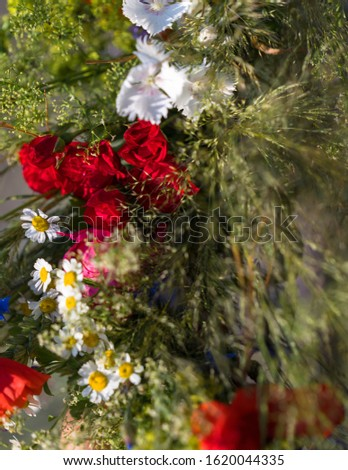 field flowers and grasses for wreath weaving. Summer solstice, a tradition for girls to weave beautiful wreaths. Focus and sharpness on individual areas. #1620044335