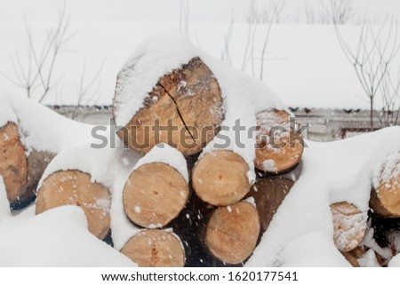 Felled trees under the snow. Raw materials for the woodworking industry. Wood storage in the open air. Timber company. Timber. Roundwood. Round timber. #1620177541