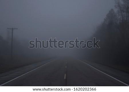 foggy morning highway on swampy highway #1620202366