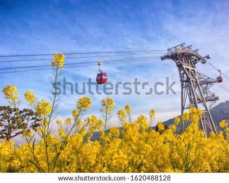 Aerial View of Sacheon Cable Car at Sunrise, Sacheon, Gyeongnam, South Korea, Asia Royalty-Free Stock Photo #1620488128