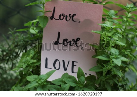 """Love love love"" handwritten on pink paper between plant leaves #1620920197"