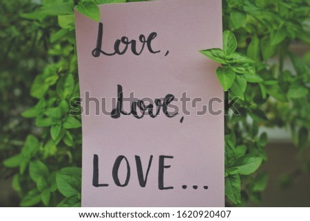"""Love love love"" handwritten on pink paper between plant leaves #1620920407"