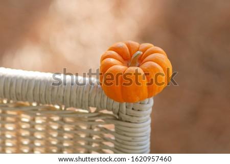 small single orange miniature pumpking sitting on a piece of cream color rattan furniture #1620957460