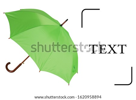 Automatic Open Wood Handle & Shaft Umbrella Isolated on White Background. Classic Walking Stick Rain Umbrella. Modern Green Parasol with Metal Ribs #1620958894