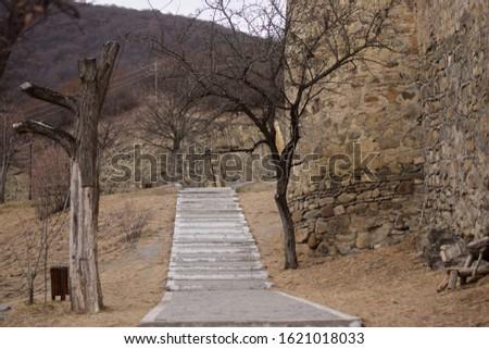 Ananuri Fortress - descending steps - Georgia - World Heritage Site  #1621018033