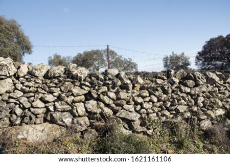 The stone walls are used in the cattle and pig farms of the oaks of oaks and cork oaks of Andalusia to prevent the animals from escaping natural light #1621161106