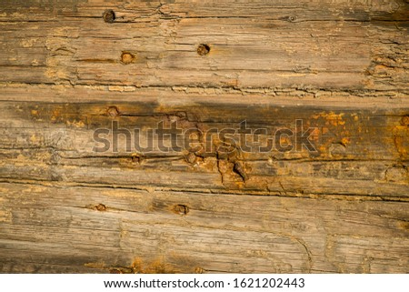 Heavily weathered wood on an old door #1621202443