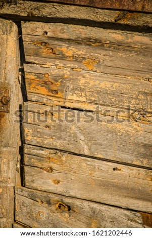 Heavily weathered wood on an old door #1621202446