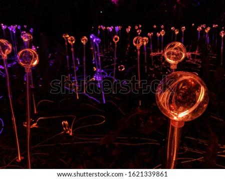 a field of lit glowing orbs #1621339861
