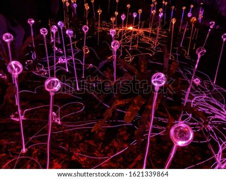 a field of lit glowing orbs #1621339864
