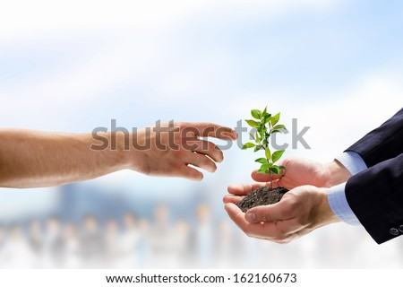Close up image of human hands holding sprout #162160673