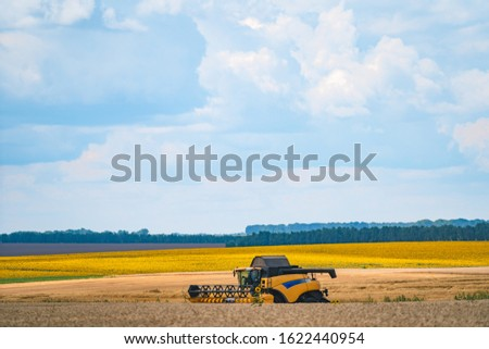 Modern combine harvester in action. Grain harvesting equipment in the field. Harvest time. #1622440954