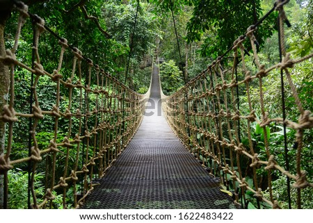 Bridge Rainforest Suspension bridge, Crossing the river, ferriage in the woods Royalty-Free Stock Photo #1622483422