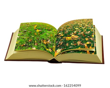 book with a picture of autumn leaves on the grass