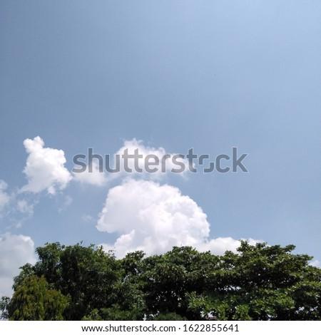 Clear sky and clear sky #1622855641