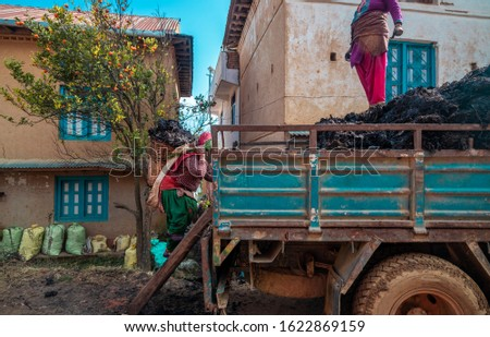 Woman carries manuer on her back to load in the truck in a remote village of Nepal. Daily life in rural areas #1622869159