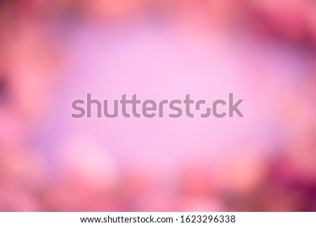 Blurred background with soft, soft colors. This is a photo taken from flowers of nature. #1623296338
