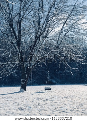 Tire swing hanging from a tree covered in snow #1623337210