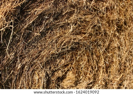 Detail of hay bale. Hay forms a spiral. #1624019092