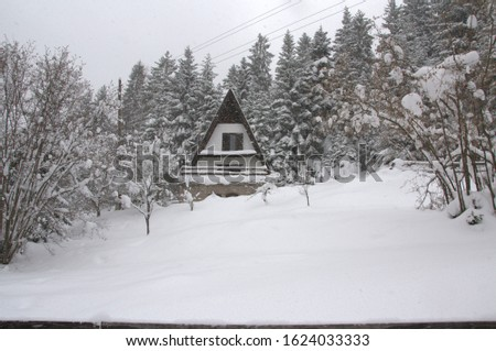 Small chalet under snow in the snow, and snow at the time and continues to branch #1624033333
