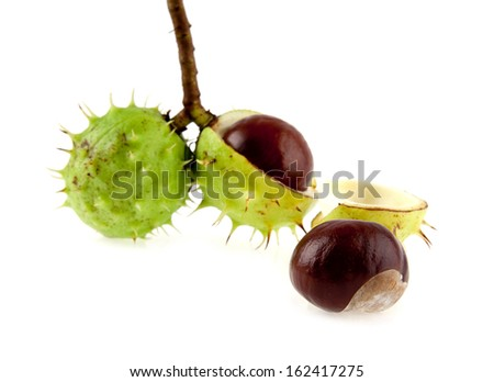 chestnuts are isolated on a white background.One picture from series.