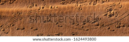 Panoramic photo of footprints and curving tracks on sand #1624493800