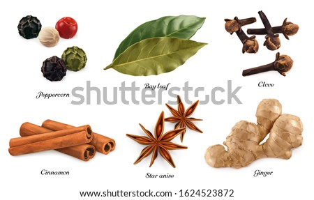Spices and herbs. Peppercorn, bay leaf, dried cloves, cassia cinnamon, star anise, ginger root. 3d vector realistic objects. Food icon set Royalty-Free Stock Photo #1624523872