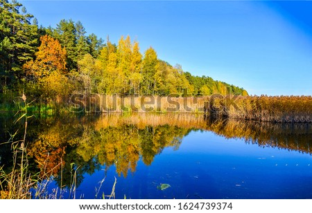 Autumn forest lake reflection view. Lake forest in autumn. Forest lake in autumn season. Autumn forest lake landscape #1624739374