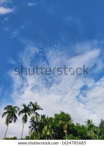 Beautiful blue sky Nice pic..