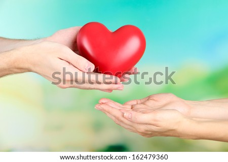 Heart in hands on nature background #162479360