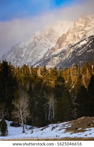 The morning sun touches the tips of the trees as clouds cover the mountain peaks in Horseshoe Park located in Rocky Mountain National Park outside of Estes Park Colorado #1625046616