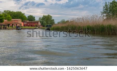 nature sceneries inside the Mincio Regional Park, Mantua #1625063647