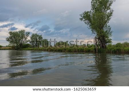nature sceneries inside the Mincio Regional Park, Mantua #1625063659