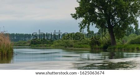 nature sceneries inside the Mincio Regional Park, Mantua #1625063674