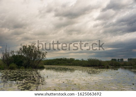 nature sceneries inside the Mincio Regional Park, Mantua #1625063692