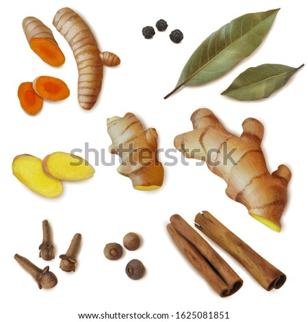 Spices and spicy roots set in realistic style . Textured items. Isolated objects cillection. Ginger, turmeric, slices, roots, Bay leaf, pepper. Vector illustration #1625081851