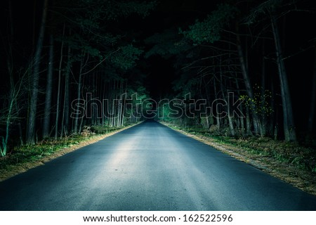 Night Road on dark forest. #162522596
